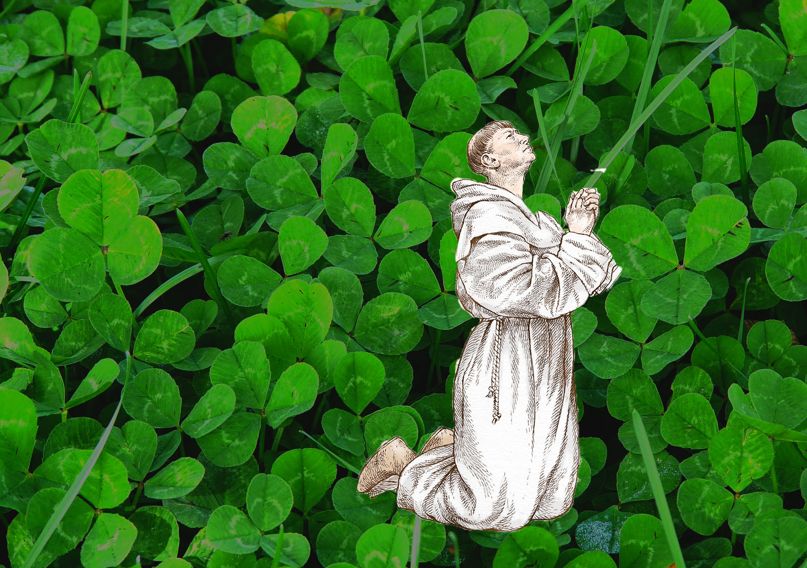 A monk praying with a field of shamrock in the background
