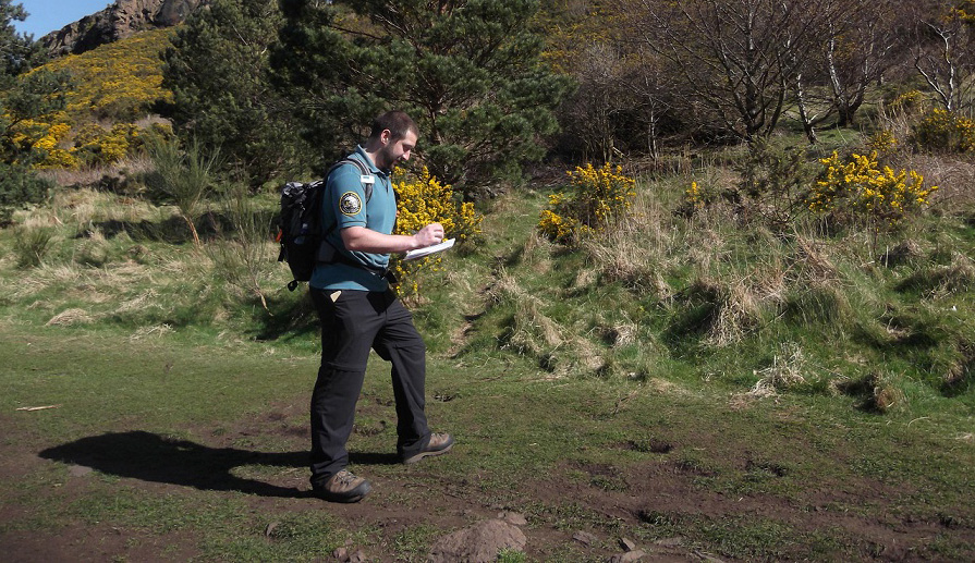 Robbie out in Holyrood Park making notes as part of the butterfly survey.