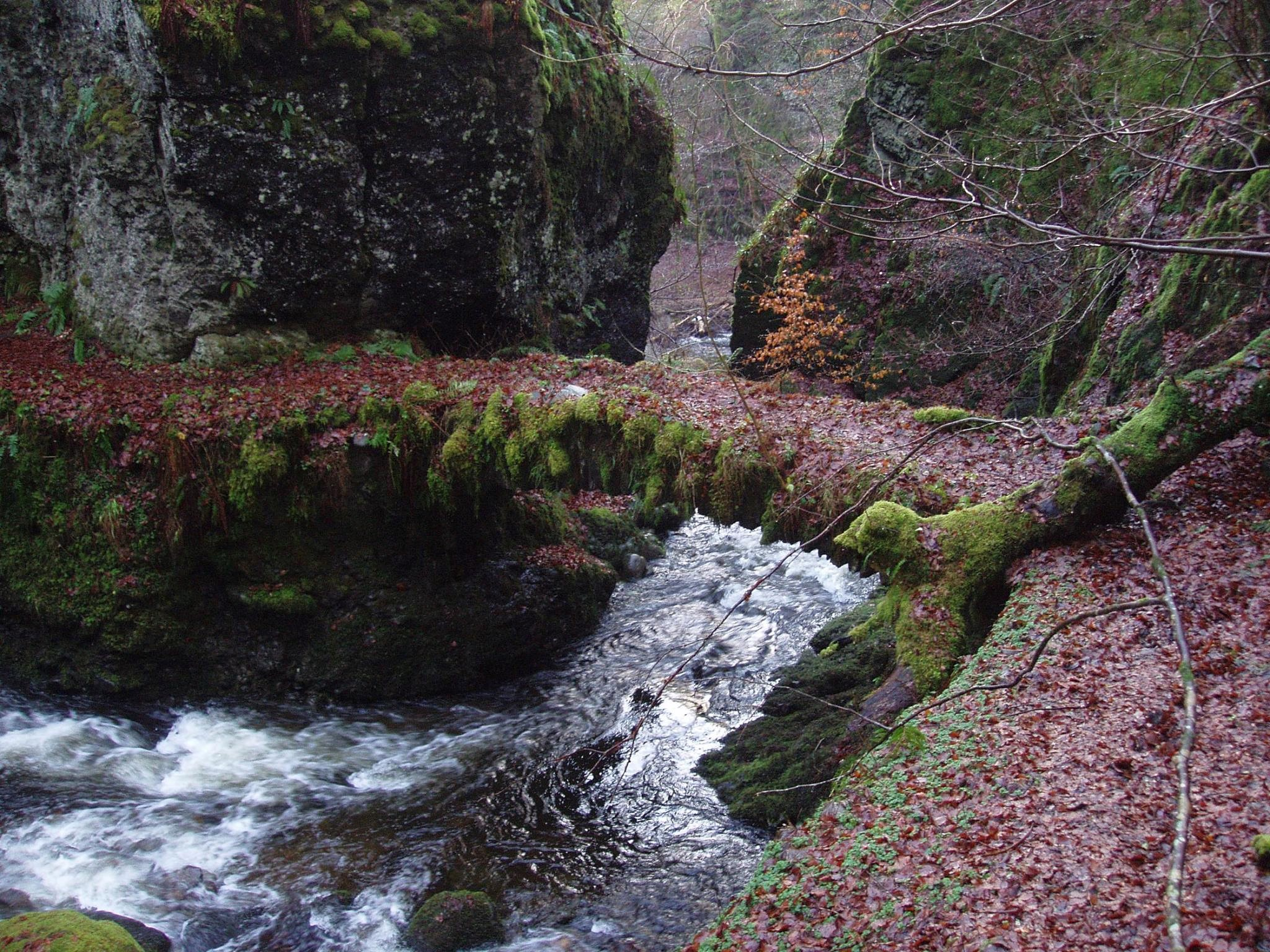 Bridge at Turret falls