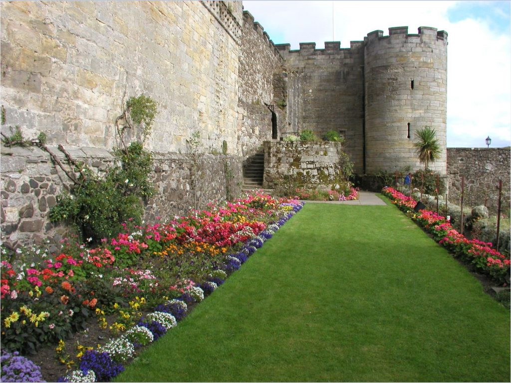 2010 image showing previous scheme of climbing roses to rear of Bed G