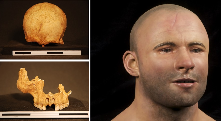 The skull and re-constructed face of a medieval knight whose skeleton was found at Stirling Castle.
