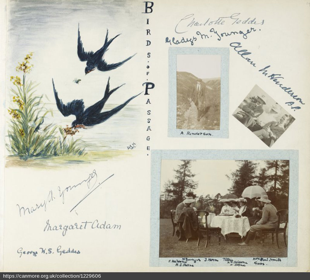 An image of an artists sketch of birds in a photo album