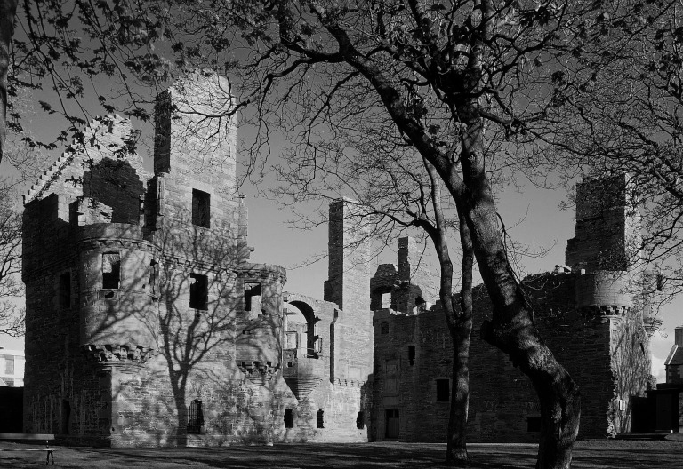 ruined palace with shadow of tree silhoutted against it