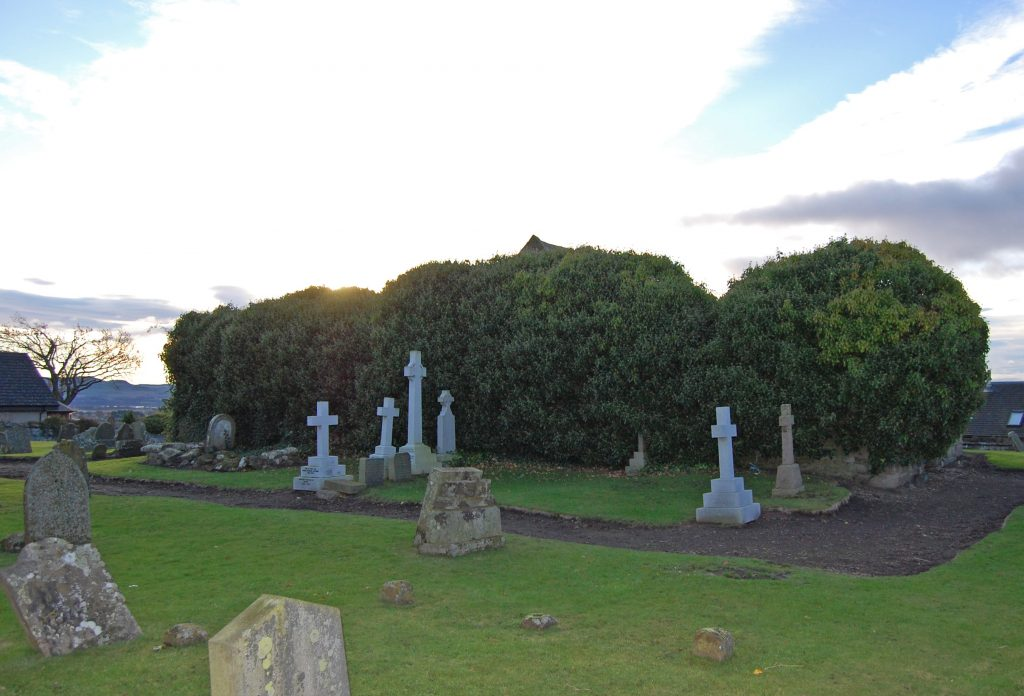 graveyard with large bushes behind tombstones, concealing a ruined church