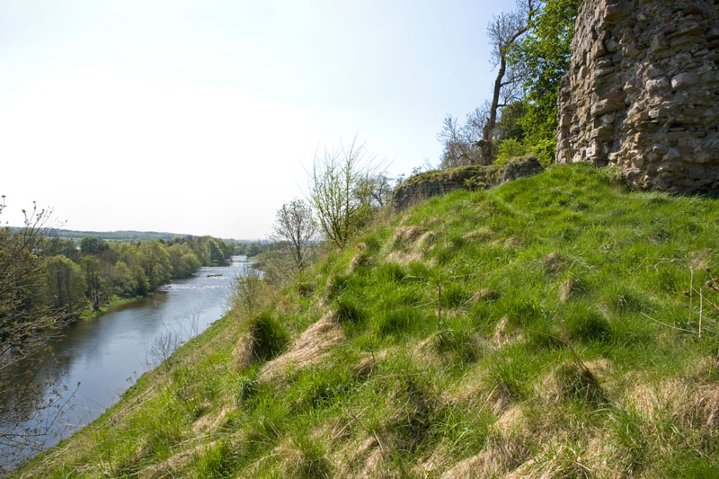 Image of a grassy river bank with an ancient castle at the top