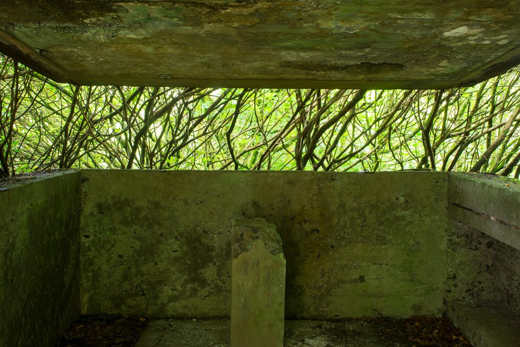 trees visible through rectangular window of stone building