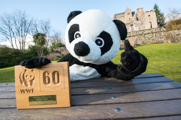 panda sits at a bench in front of a castle
