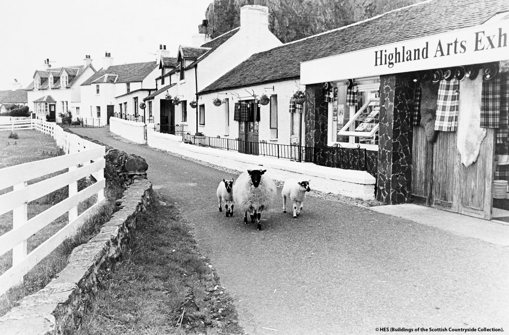 A sheep with her lambs walk up the main street in a small Scottish town