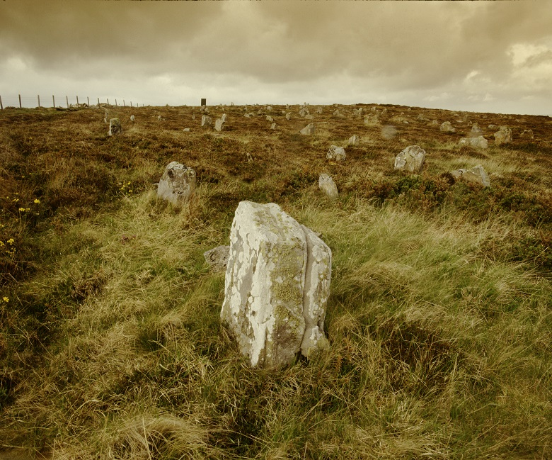 View of Hill o'Many Stanes. Lots of small stones dot a wild landscape