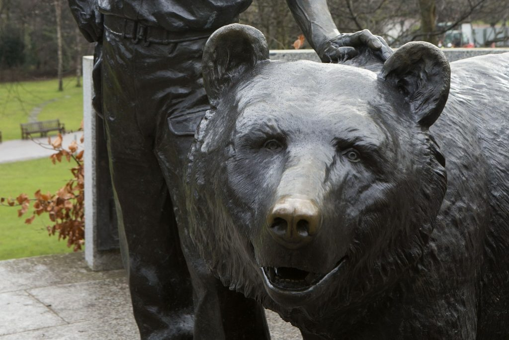 close up photo of sculpture of a bear