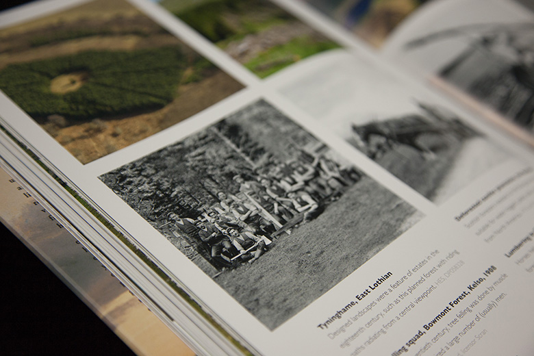 Close-up of photographs inside a book