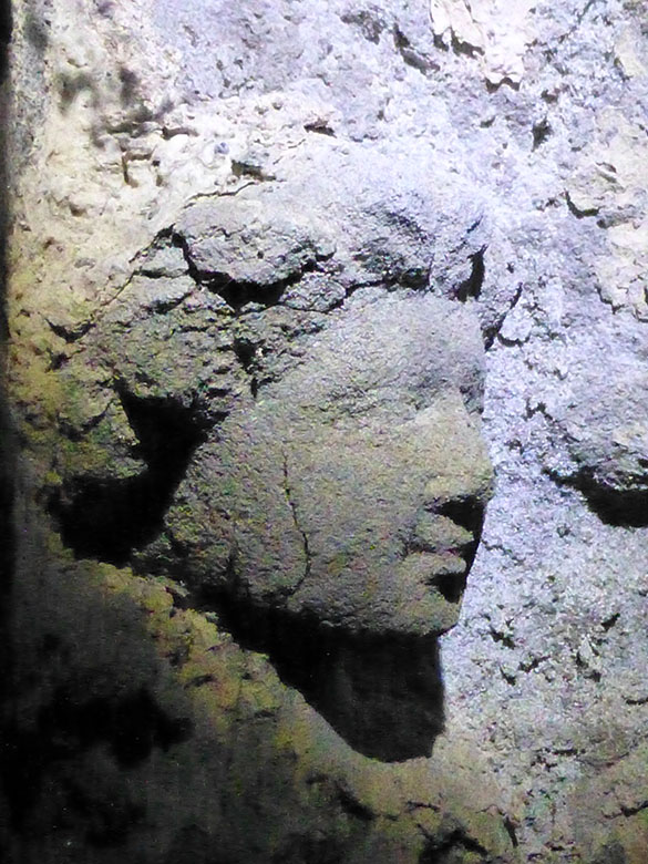 A mobile phone photo of the carved head of one of the figures discovered.