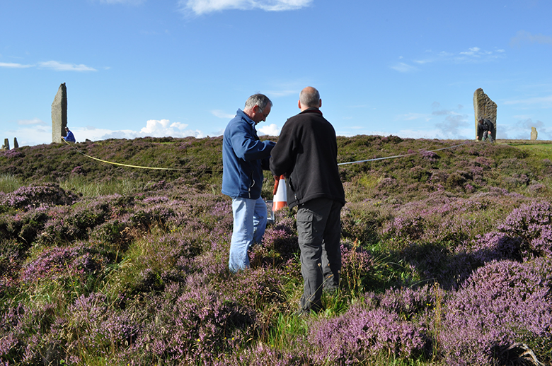 A team with a tape measure survey standing stones on a heather-clad hill
