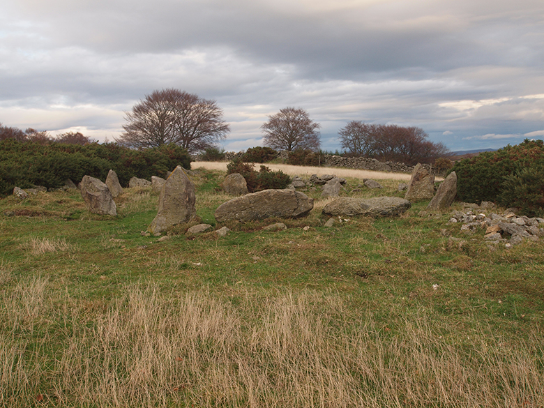 A stone circle sitting in rough grassland. Trees and hills can be seen in the background.
