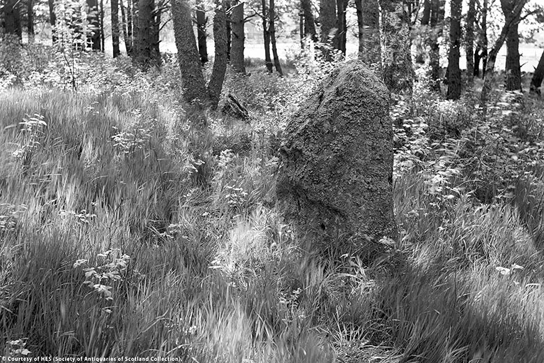 A black and white photo of a small standing stone in woodland