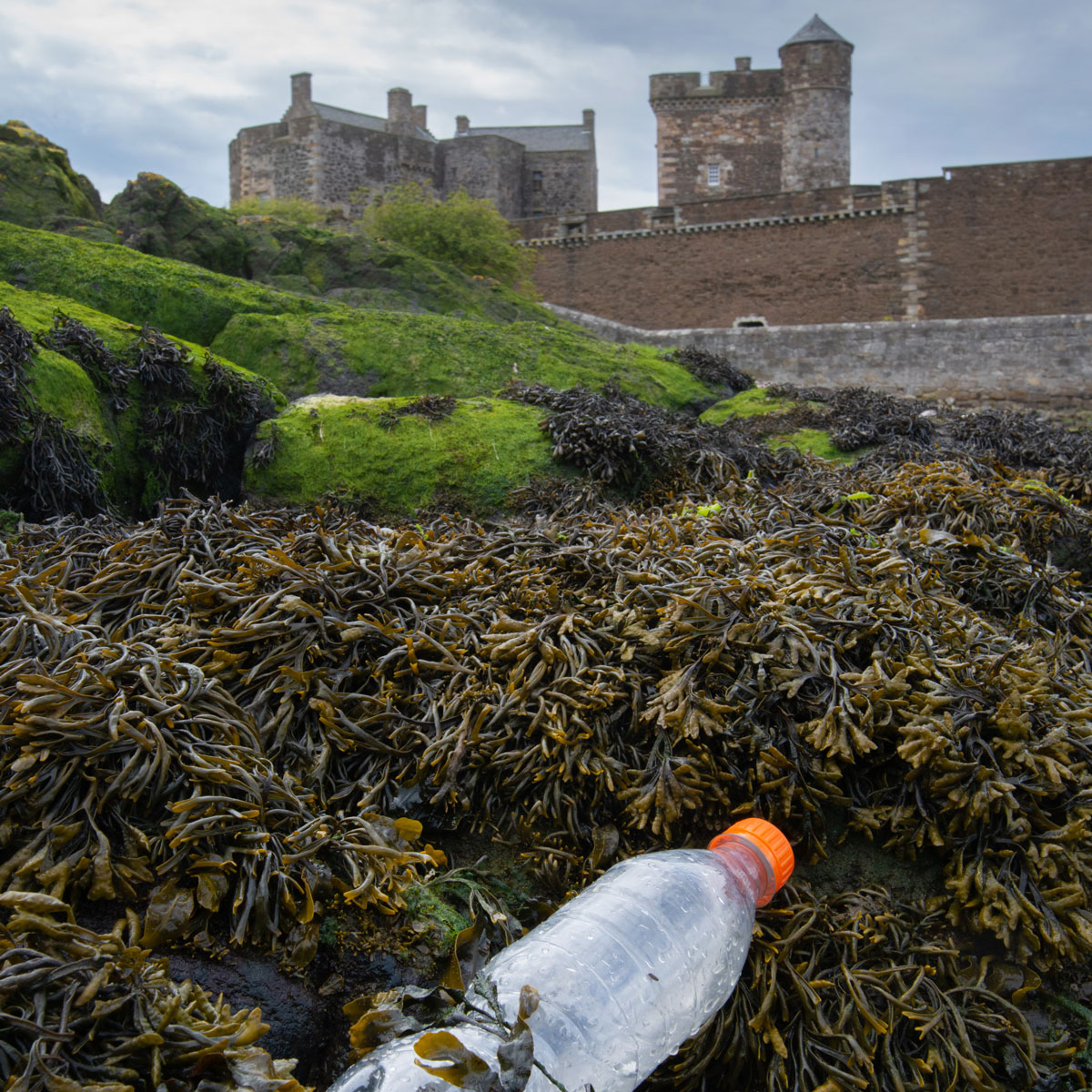 A plastic bottle sits on a shore of seaweed in front of Blackness Castle