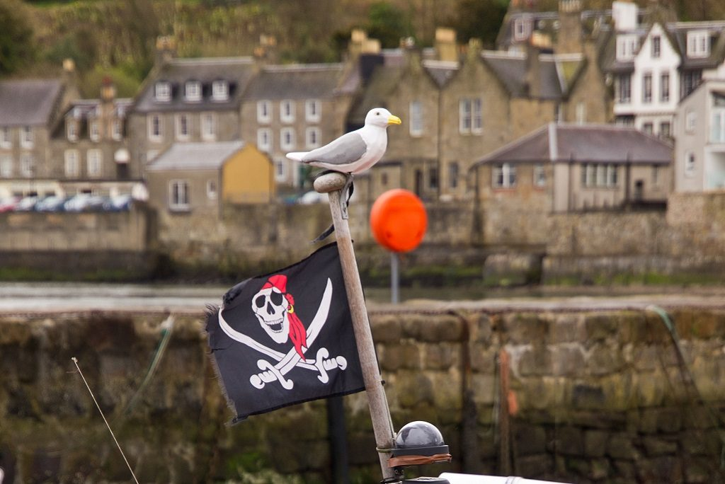 A jolly roger flag flying on a ship. A seagull sits atop the mast. There is a fishing village in the background.