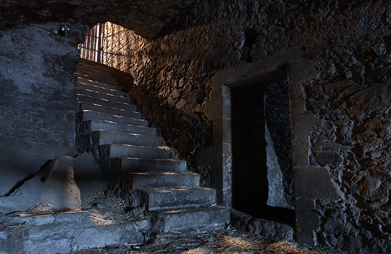 A dingy room. There is a barred gate at the top of a set of stone stairs.
