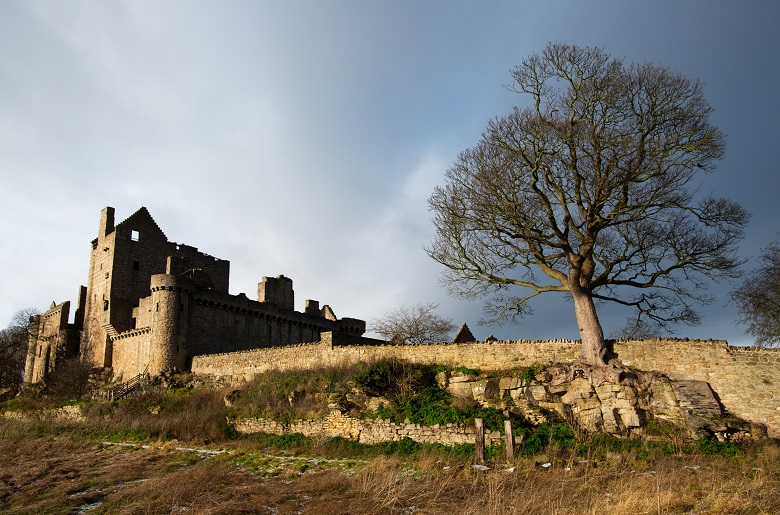 The ruins of a castle taken from an adjoining field. A large tree dominates the picture.
