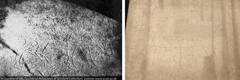 Two photos. One showing the original Photograph of the Dunadd Boar 'Pictish' engraving. Carving '7th or 8th century AD'.