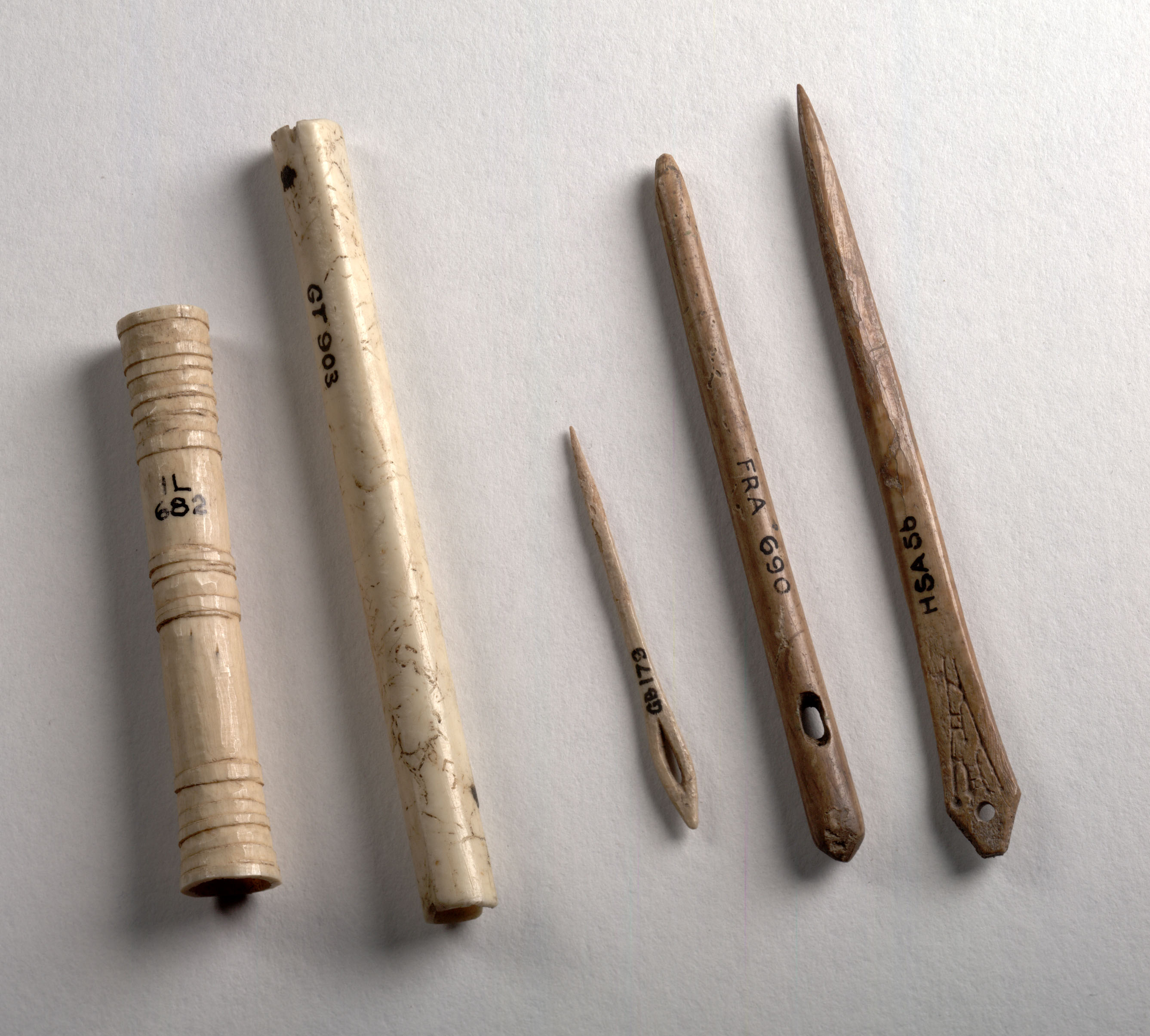 three thin bone needles of different sizes and two cylindrical cases to hold them