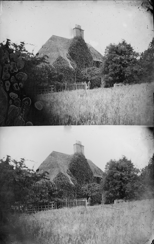 Two photos of a modest cottage. Most of the building except for the roof and a large central chimney is obscured by the trees, shrubs and ivy which grow in abundance around it.
